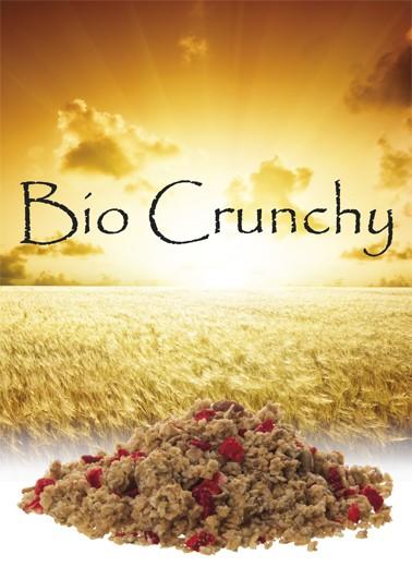 Bio Crunchy Erdbeer