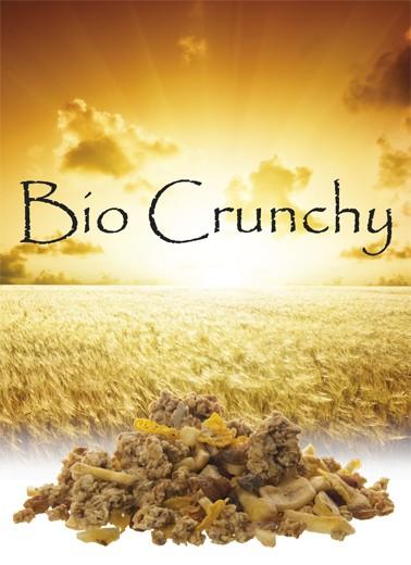 Bio Crunchy Früchte
