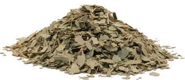 Eukalyptusblätter geschnitten